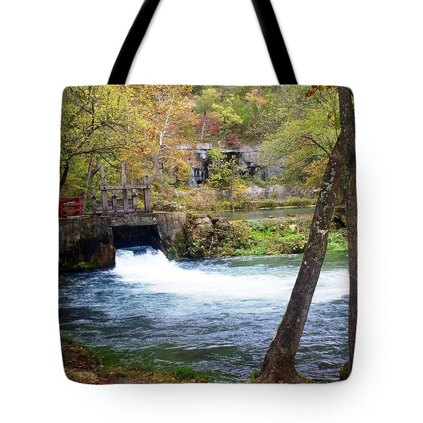 Alley Spring Tote Bag by Marty Koch