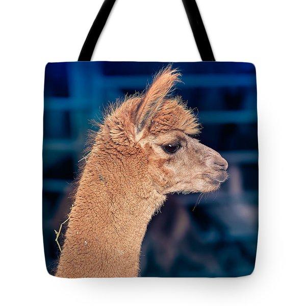 Alpaca Wants To Meet You Tote Bag by TC Morgan