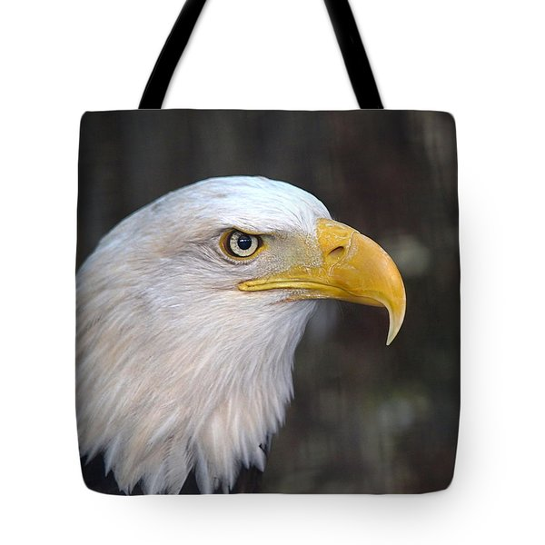 American Bald Eagle Tote Bag by Peter Gray