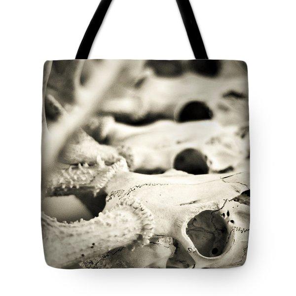 An Echo Of Mortality Tote Bag by Rebecca Sherman