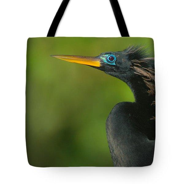 Anhinga Anhinga Anhinga, Tortuguero Tote Bag by Panoramic Images