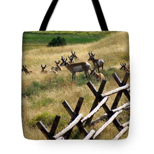 Antelope 2 Tote Bag by Marty Koch