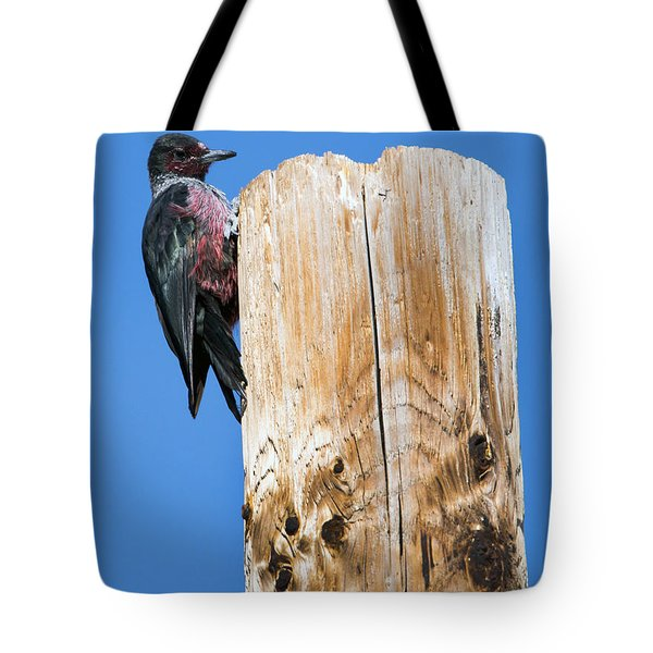 Any Tree Will Do Tote Bag by Mike Dawson