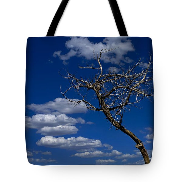 Apparition Tote Bag by Skip Hunt