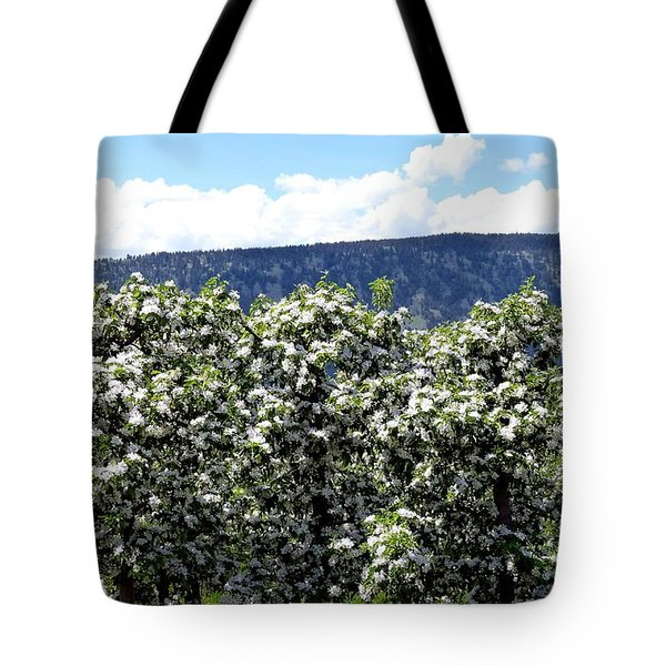 Apple Trees In Bloom     Tote Bag by Will Borden