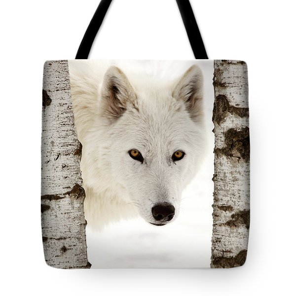 Arctic Wolf Seen Between Two Trees In Winter Tote Bag by Mark Duffy