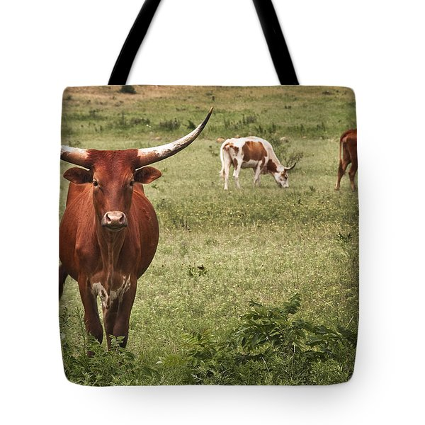 Are You Talking To Me Tote Bag by Tamyra Ayles