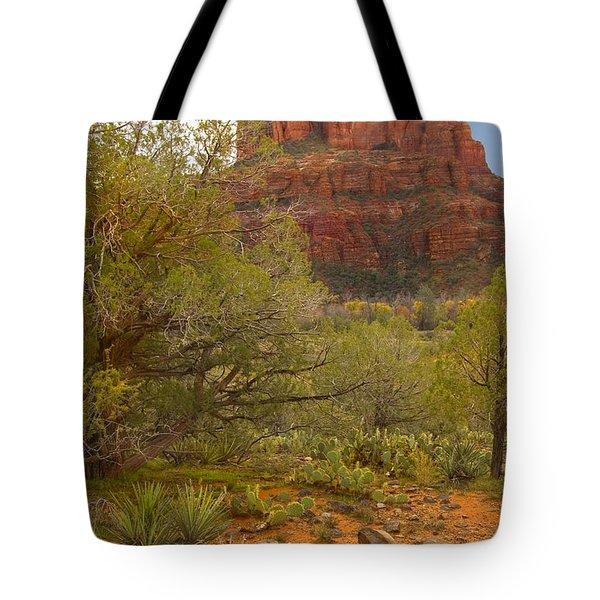 Arizona Outback 3 Tote Bag by Mike McGlothlen