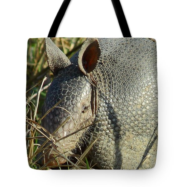 Armadillo By Morning Tote Bag by Robert Frederick