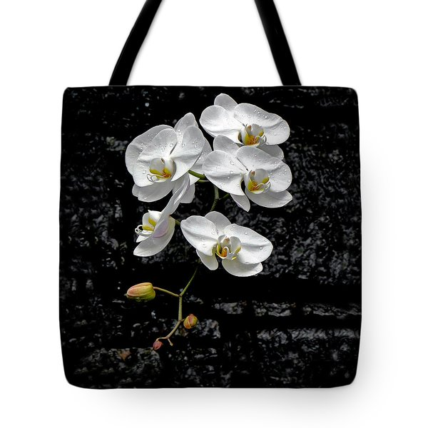 Dew-kissed Cascading Orchids Tote Bag by Sue Melvin
