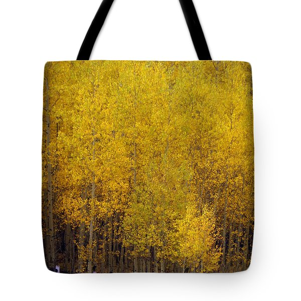 Aspen Fall 2 Tote Bag by Marty Koch