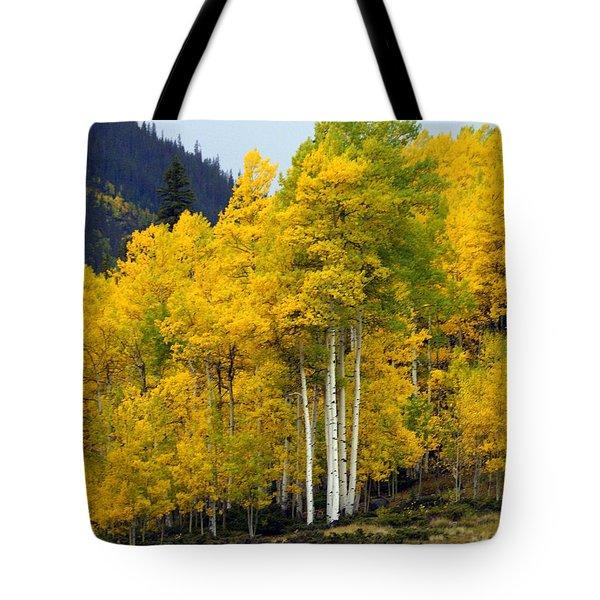 Aspen Fall 3 Tote Bag by Marty Koch