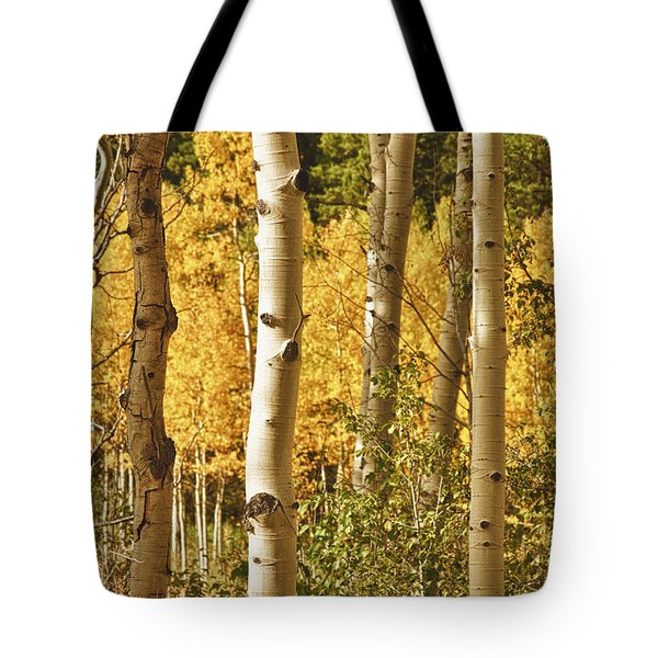 Aspen Gold Tote Bag by James BO  Insogna