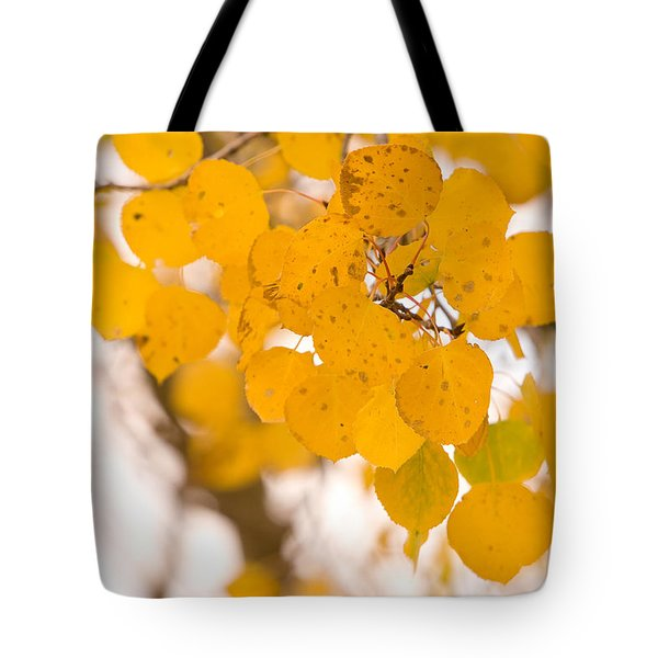 Aspen Leaves Tote Bag by James BO  Insogna