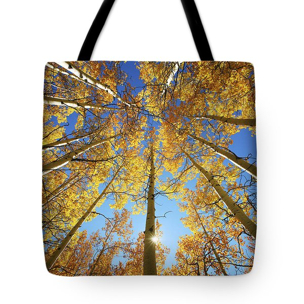 Aspen Tree Canopy 2 Tote Bag by Ron Dahlquist - Printscapes