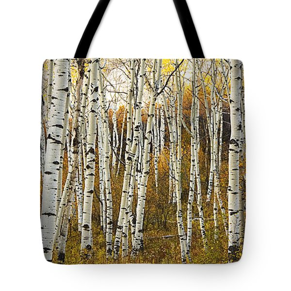 Aspen Tree Grove Tote Bag by Ron Dahlquist - Printscapes