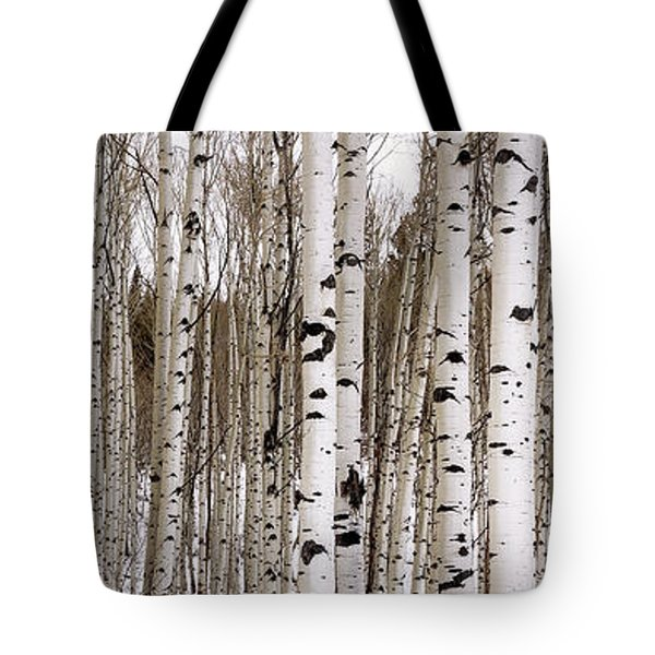 Aspens In Winter Panorama - Colorado Tote Bag by Brian Harig