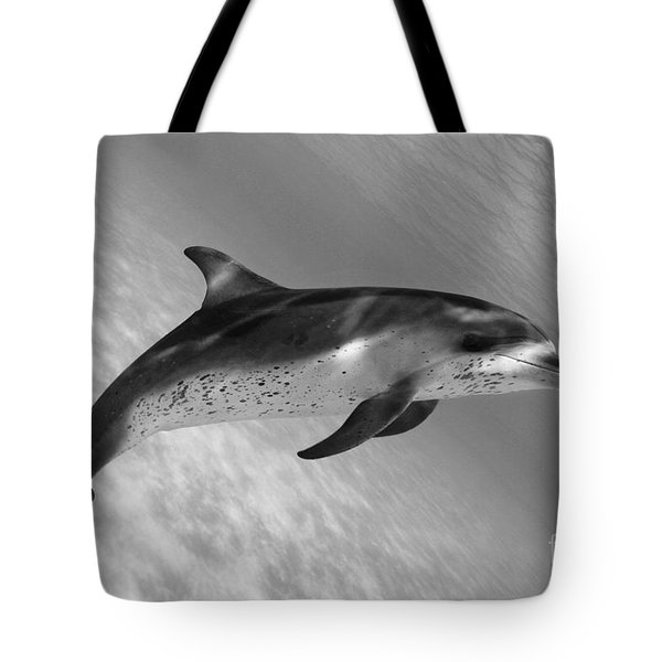 Atlantic Spotted Dolphin Tote Bag by Dave Fleetham - Printscapes