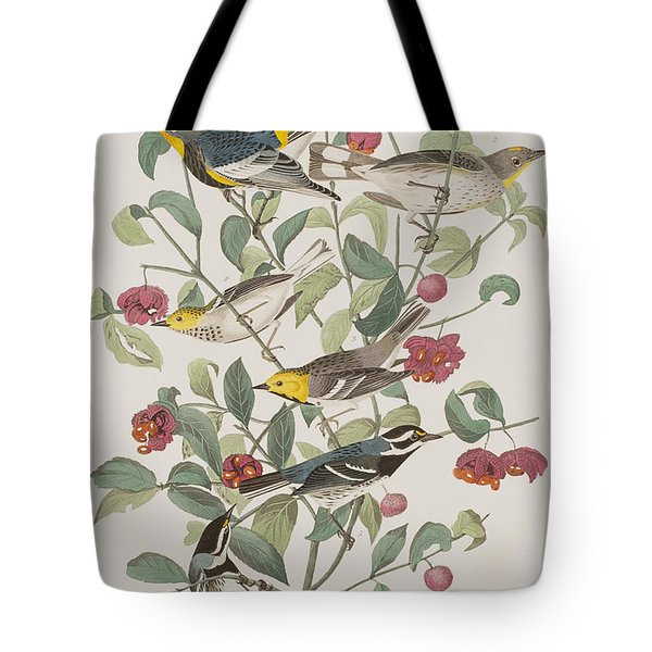 Audubons Warbler Hermit Warbler Black-throated Gray Warbler Tote Bag by John James Audubon