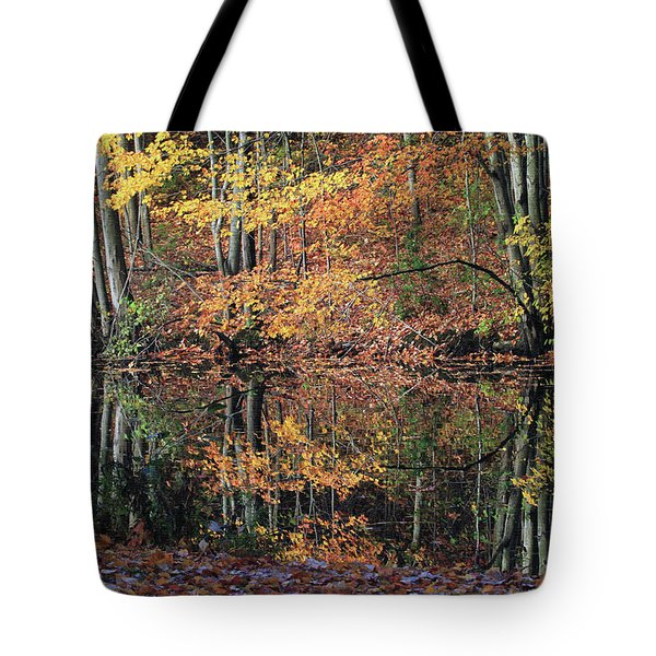 Autumn Colors Reflect Tote Bag by Karol Livote