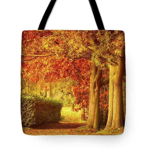 Autumn Colors Tote Bag by Wim Lanclus