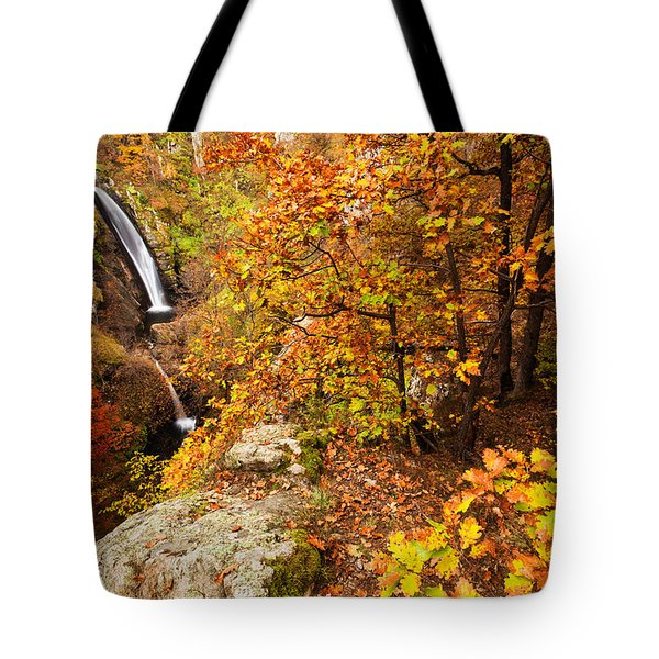 Autumn Falls Tote Bag by Evgeni Dinev