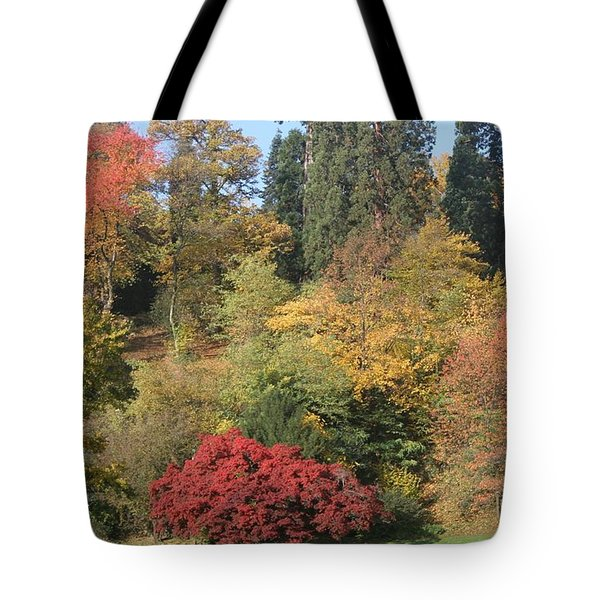 Tote Bag featuring the photograph Autumn In Baden Baden by Travel Pics