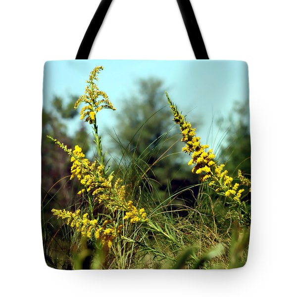 Autumn In The Wind Tote Bag by Debra Forand