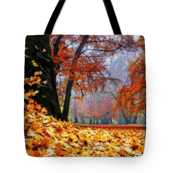 Autumn In The Woodland Tote Bag by Hannes Cmarits