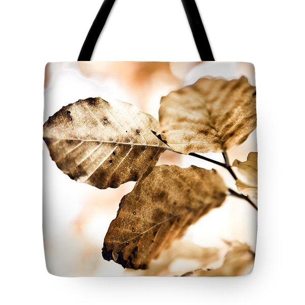 Autumn Leaves Tote Bag by Frank Tschakert