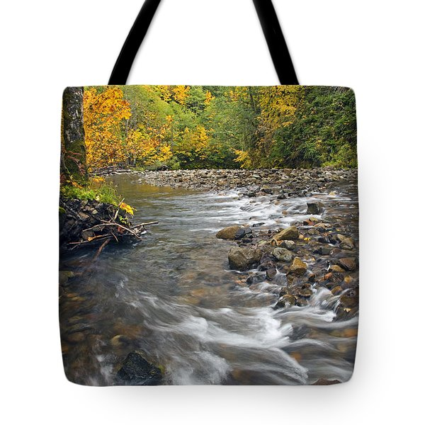 Autumn Meander Tote Bag by Mike  Dawson