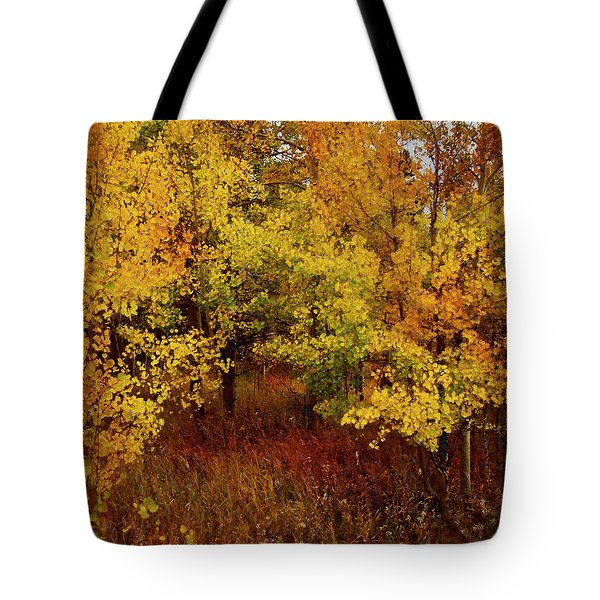 Autumn Palette Tote Bag by Carol Cavalaris