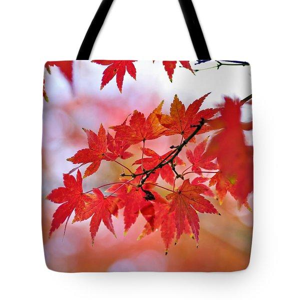 Autumn Pastel Tote Bag by Kaye Menner
