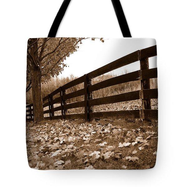 Autumn Perspective Tote Bag by Joe  Ng