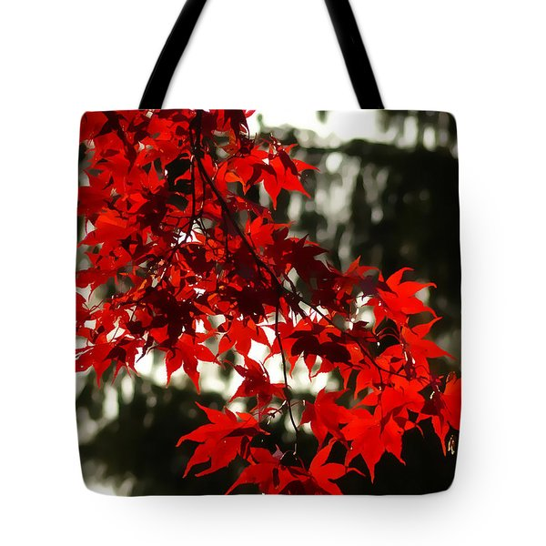 Autumn Red Tote Bag by Jeff Breiman