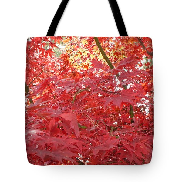 Autumn Red Poster Tote Bag by Carol Groenen