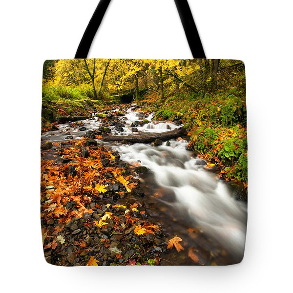 Autumn Split Tote Bag by Mike  Dawson
