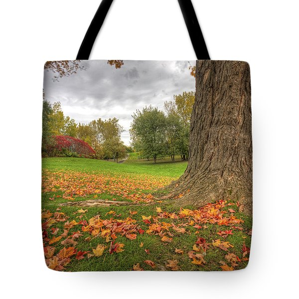 Autumn Tale Tote Bag by Mircea Costina Photography