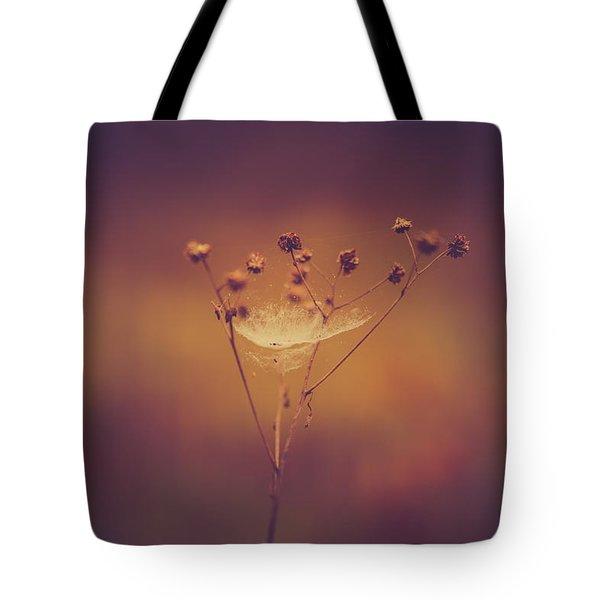 Autumn Web Tote Bag by Shane Holsclaw