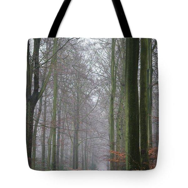 Autumn woodland avenue Tote Bag by Gary Eason