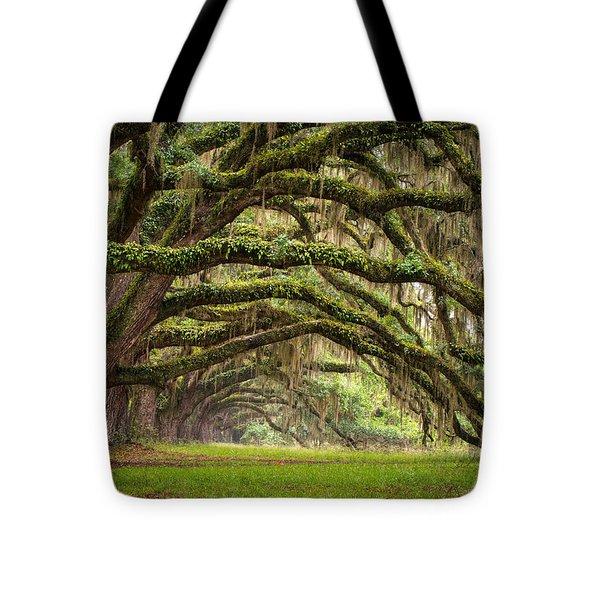 Avenue Of Oaks - Charleston Sc Plantation Live Oak Trees Forest Landscape Tote Bag by Dave Allen