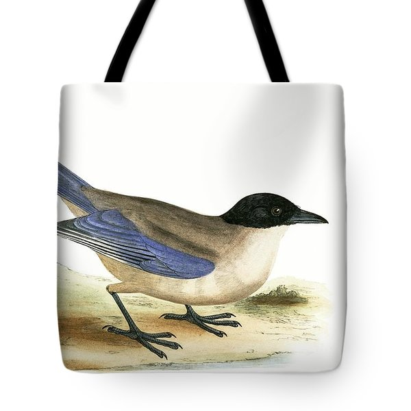 Azure Winged Magpie Tote Bag by English School
