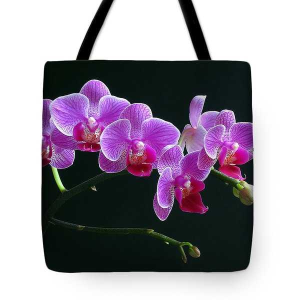 Baby Bloomers Tote Bag by Juergen Roth