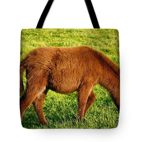 Baby Donkey Tote Bag by Gaspar Avila