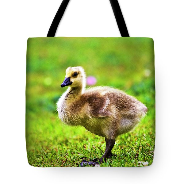 Baby Face Tote Bag by Scott Pellegrin