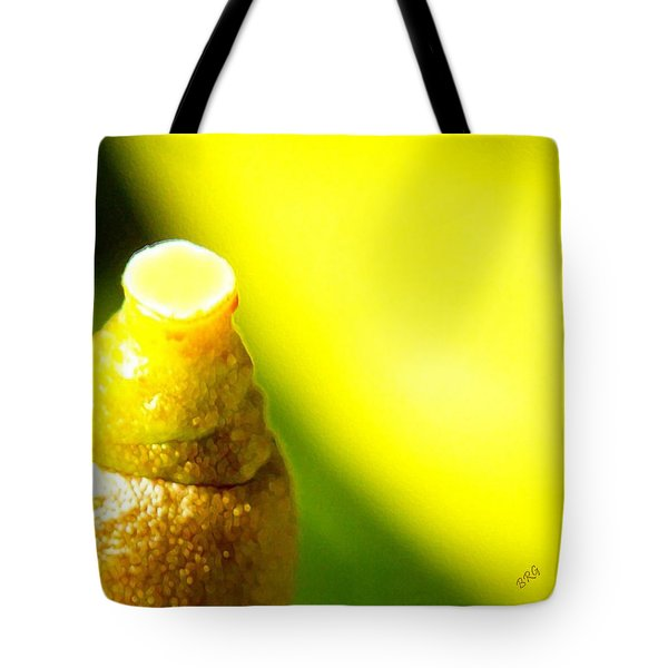 Baby Lemon On Tree Tote Bag by Ben and Raisa Gertsberg