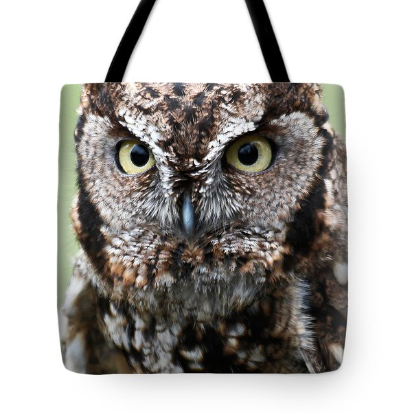 Baby Owl Eyes Tote Bag by Athena Mckinzie