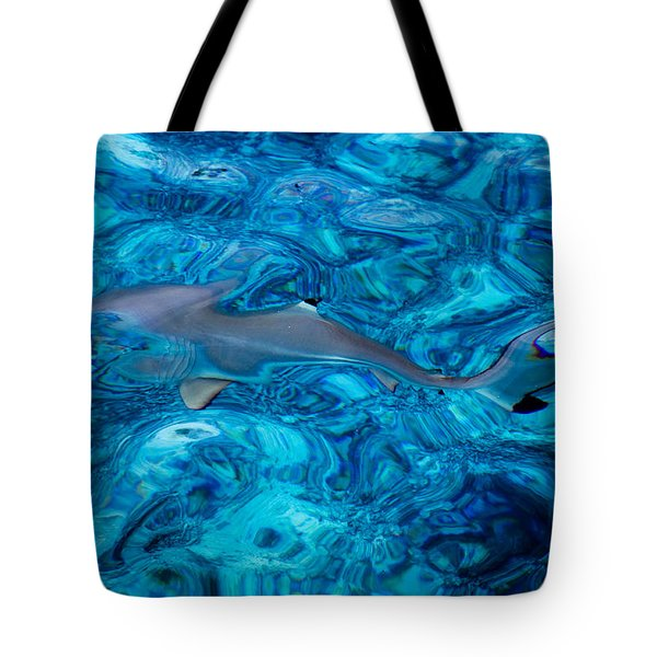 Baby Shark In The Turquoise Water. Production By Nature Tote Bag by Jenny Rainbow