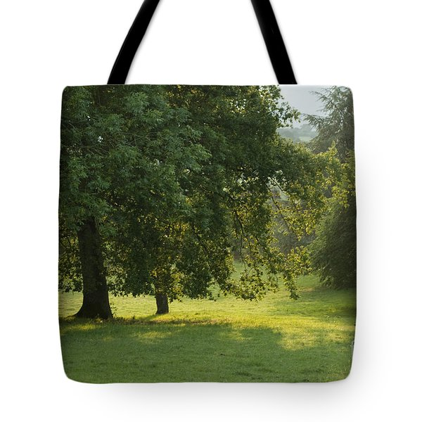Back From The Meadow Tote Bag by Angel  Tarantella