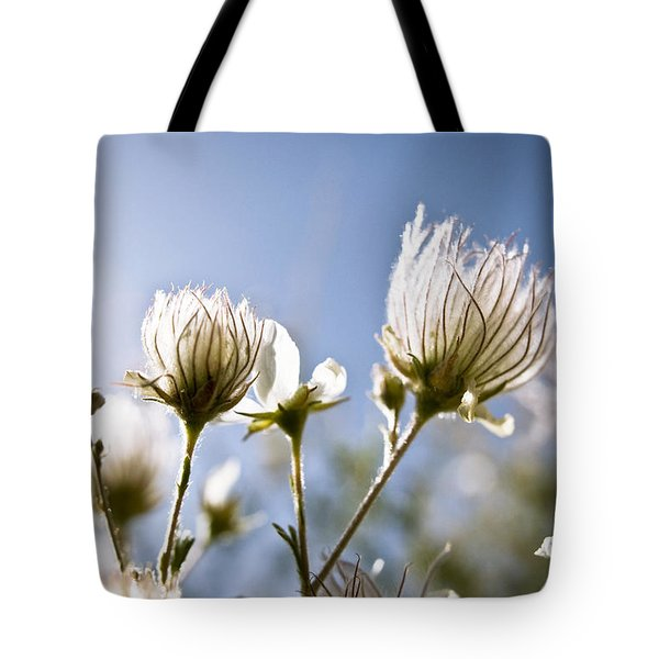 Backlit Fuzzy Flower Tote Bag by Ray Laskowitz - Printscapes